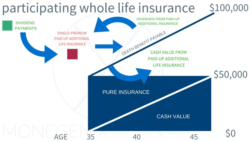 Dividend-Paying Whole Life Insurance